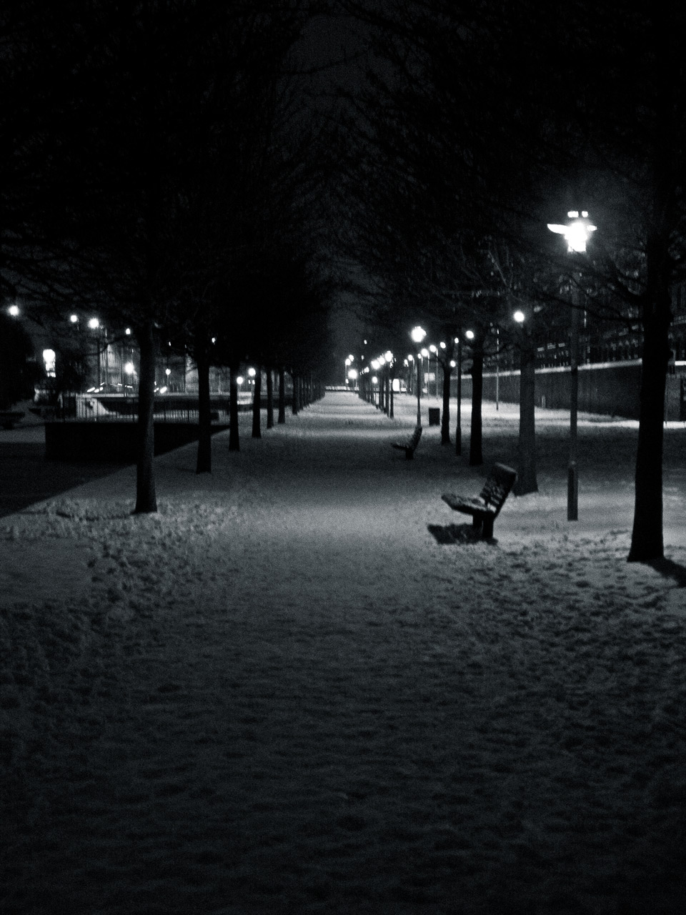 Photo: Lonely Benches
