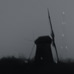 kinderdijk_by_night